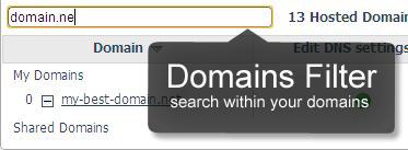 Domain names filter