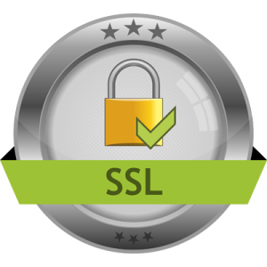 SSL certificates for higher ranking sites