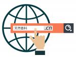 IDN domain names