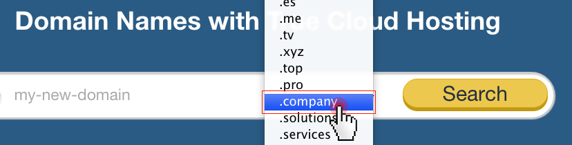 .COMPANY nTLD in the domain search form