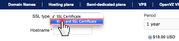 SSL certificates - select SSL type