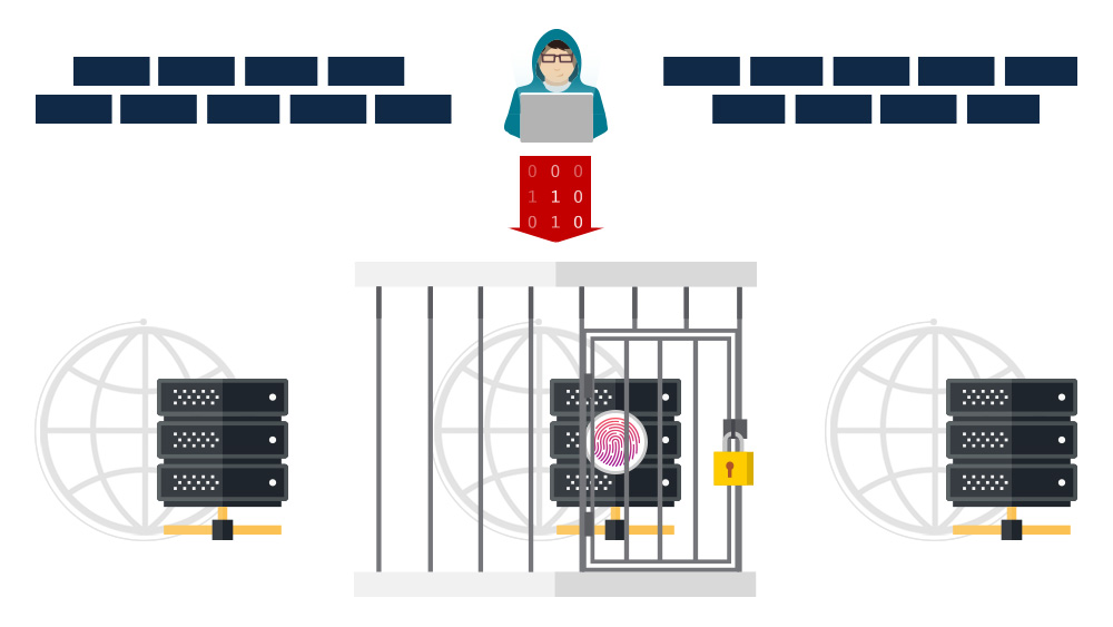 Jail host infographic