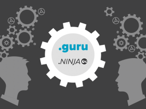.GURU and .NINJA now open for registration