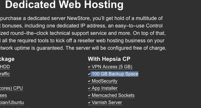 Dedicated servers backup - store master theme