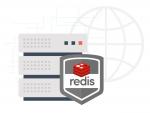 Redis data storage system on our hosting-platform