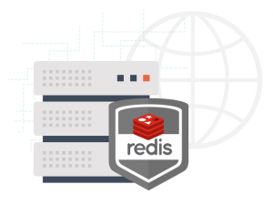 Redis data storage system on our hosting-platform