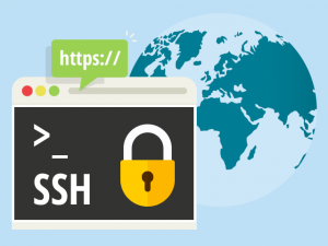 Web-based SSH in Hepsia Control Panel